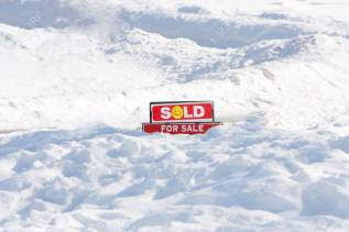 For sale in snow